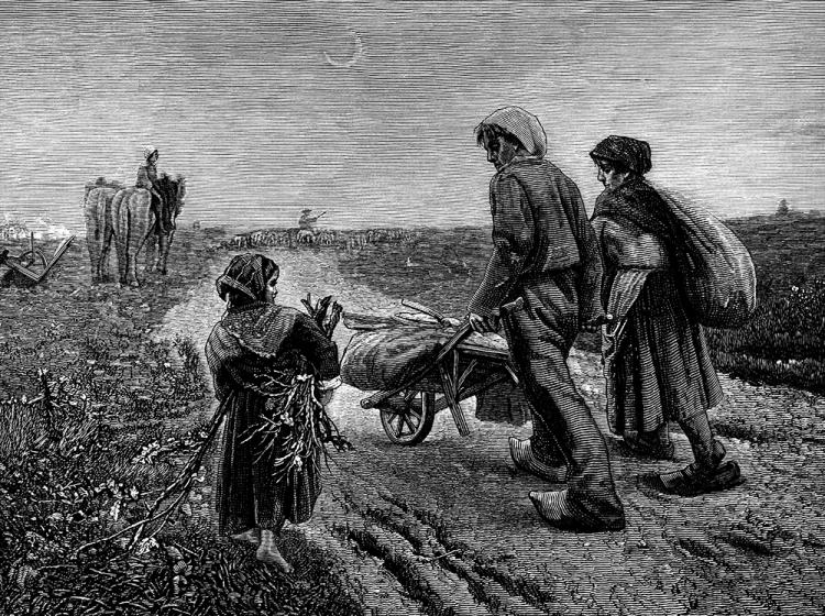 Histoire des paysans villeurbannais