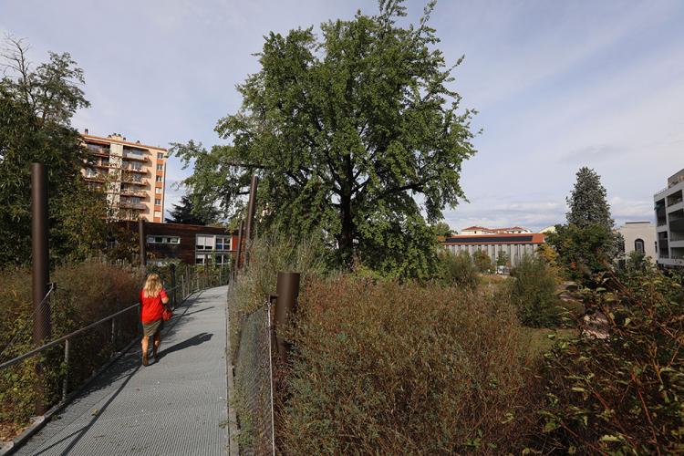 On vote pour le parc Hugentobler !