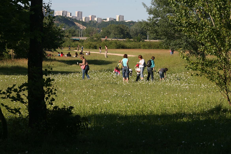 Les parcs et jardins s'animent