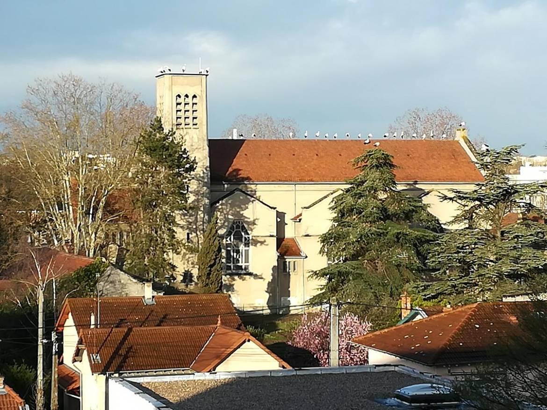 Des cigognes sur le toit de l'église de la Sainte-Famille.