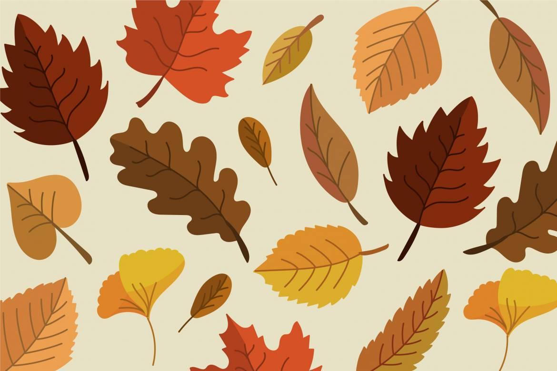 Animations d'automne