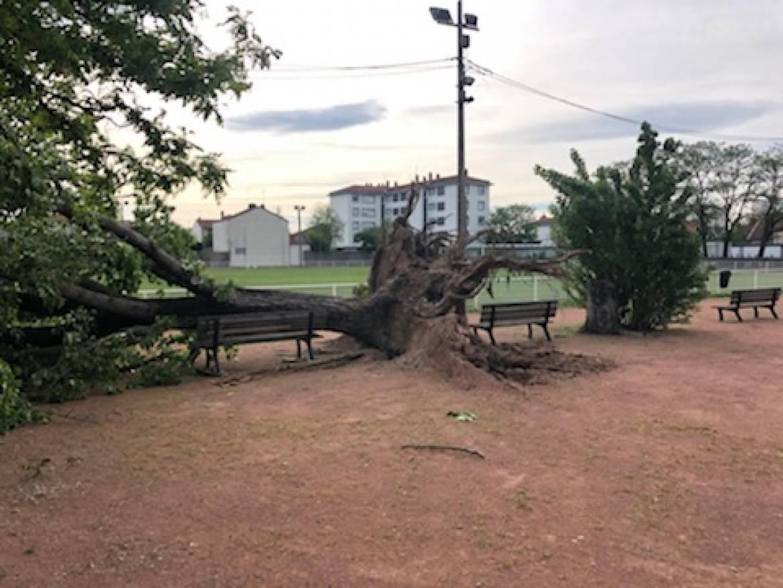 Fermeture des parcs et appel à la vigilance